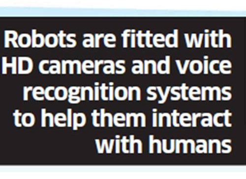 Growing number of private and PSBs introducing humanoid robots to answer basic customer queries