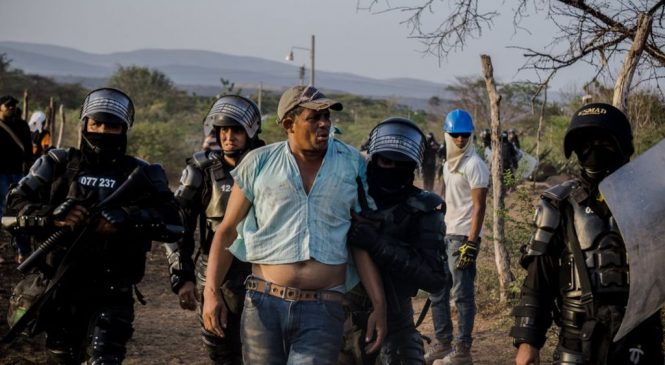 Record number of environmental activists killed around the world