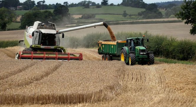 Waste products, not crops, key to boosting UK biofuels