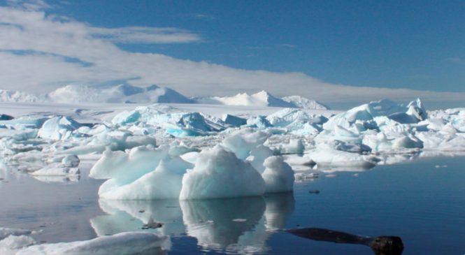 Scientists find 91 volcanoes under Antarctic ice