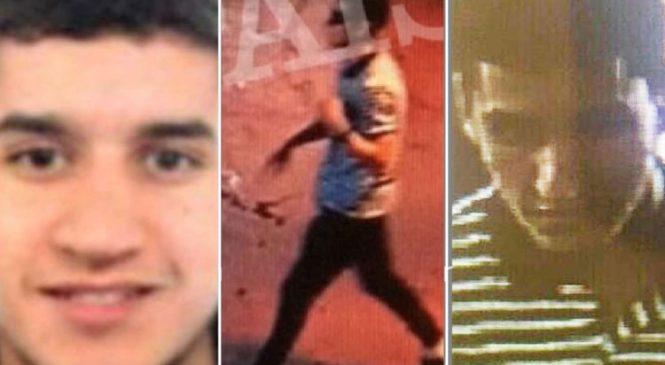 Barcelona van driver in 'bomb belt' shot dead