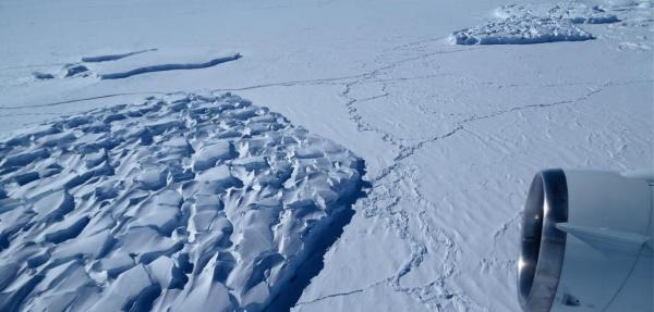 Methane-eating microbes may curb gas emissions as Antarctic ice sheets melt