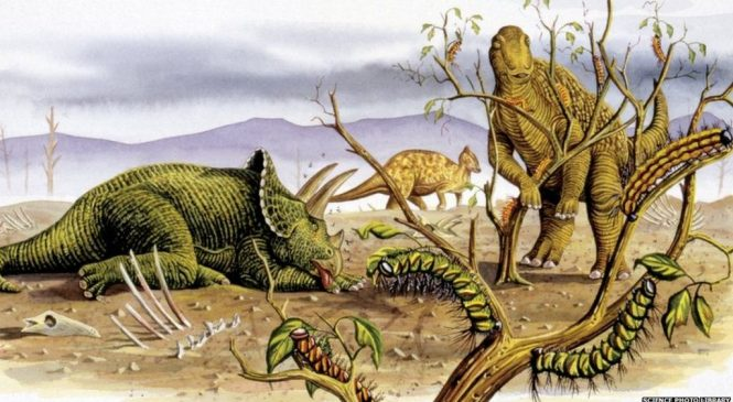Plant-eating dinosaurs 'strayed from veggie diet'