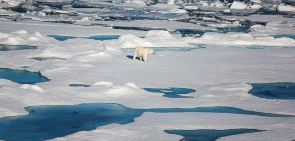Study shows Arctic sea ice continues to melt considerably