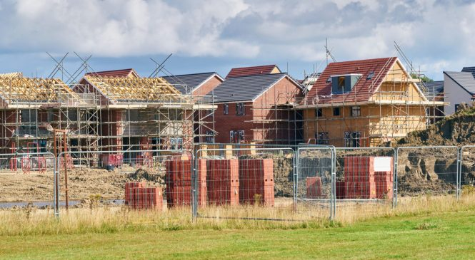 Construction growth slumps to one-year low