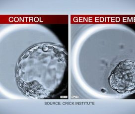 UK scientists edit DNA of human embryos