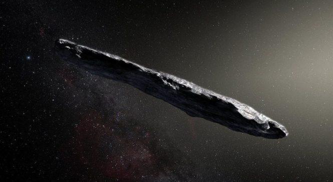 Bizarre shape of interstellar asteroid
