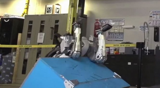 WATCH: Breakthrough as robot does backflip