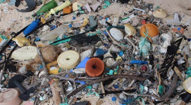 UK plan to tackle plastic waste threat