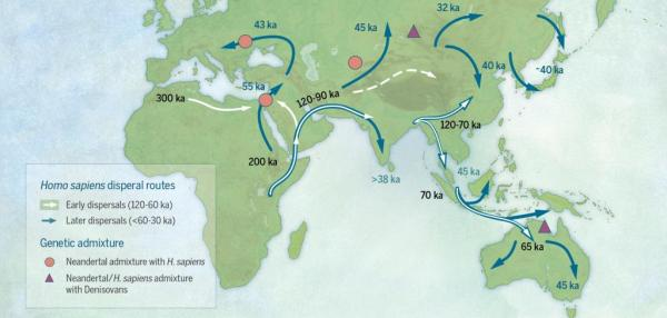 Scientists revamp 'Out of Africa' model of early human migration