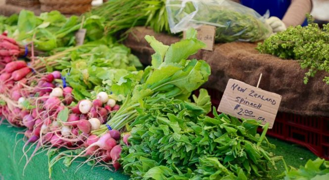 Eat your vegetables: Nutrients in leafy greens may help prevent dementia