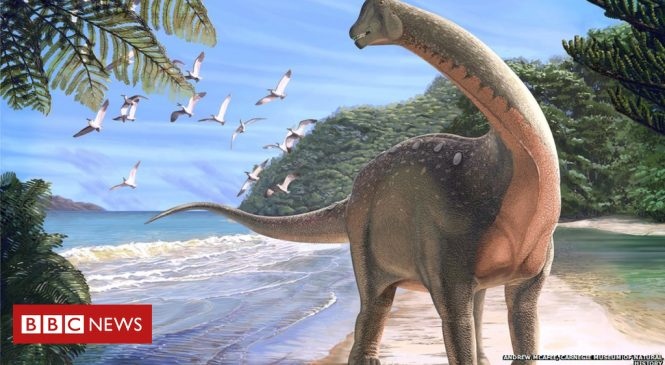 Lost history of African dinosaurs revealed