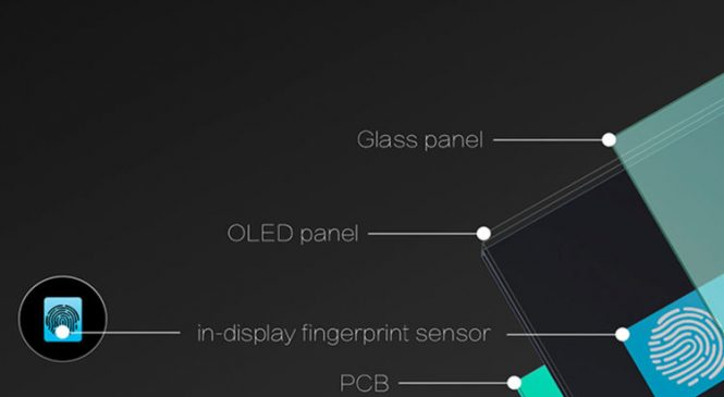 Phone embeds fingerprint sensor within screen