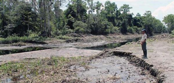 Oil spills expose indigenous communities to toxic metals