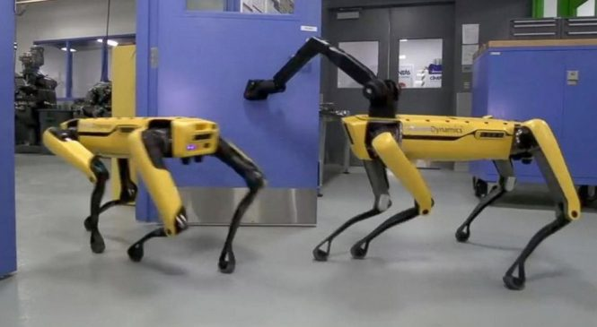 Dog-like robot opens door in mesmerizing viral video