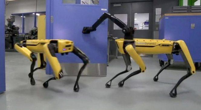 Dog-like robot opens door in mesmerizing viral video
