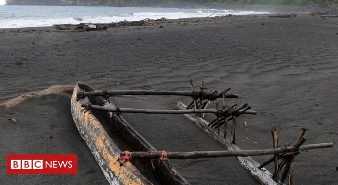 DNA sheds light on settlement of Pacific