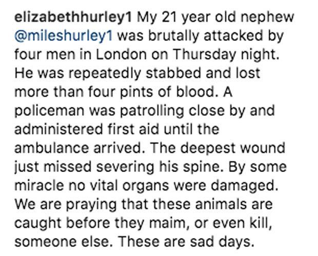 Elizabeth Hurley nephew Miles Instagram post