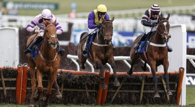 Coral Daily Download: Cheltenham Festival day three – Latest racing odds on St Patrick's Thursday