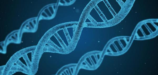 Gene-editing patient applications closer with new technique