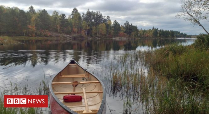 New climate 'feedback loop' discovered in freshwater lakes