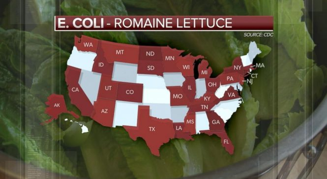 WATCH: 29 states now affected by E.coli romaine lettuce outbreak: CDC