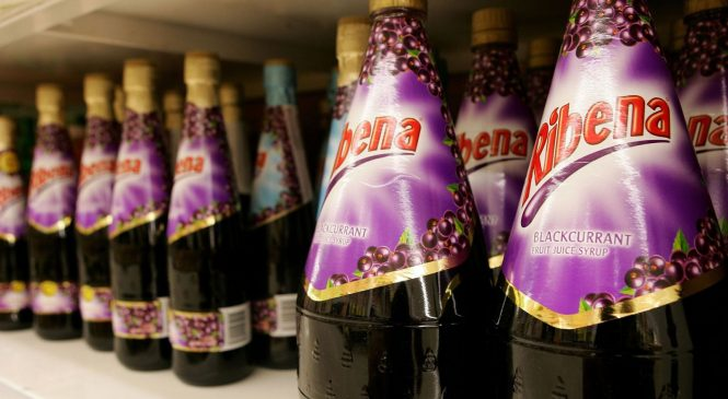 Scientists create hair dye from Ribena blackcurrants