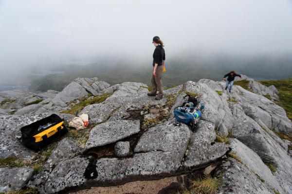 Boulders offer new clues about early human migration to the Americas