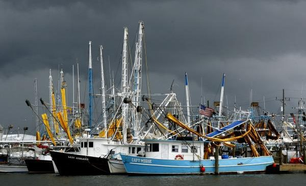 Increase in size, frequency of ocean storms a threat to global fisheries
