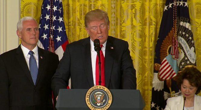 Trump wades into German migration row