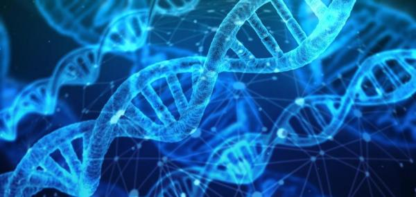 DNA mutations 'hotspots' may help determine cancer risk, study says