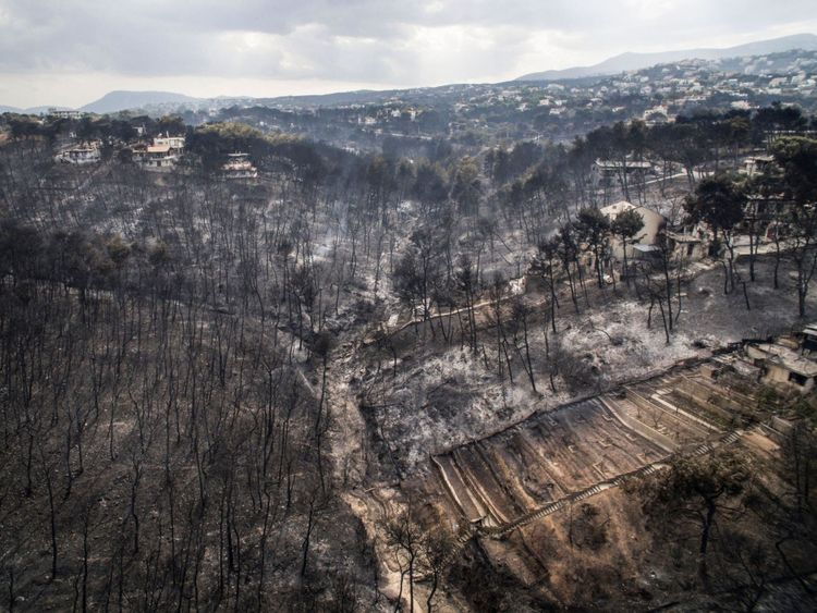 'Serious indications' Greece wildfire was arson