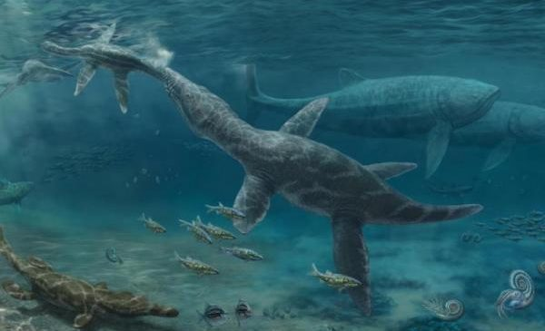 Jurassic reptiles were forced to adapt to sea level rise