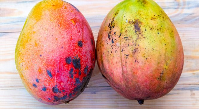 6 Health Benefits of Mangoes