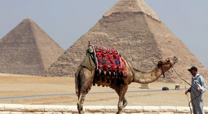 Egypt finds village that 'predated pharaohs'