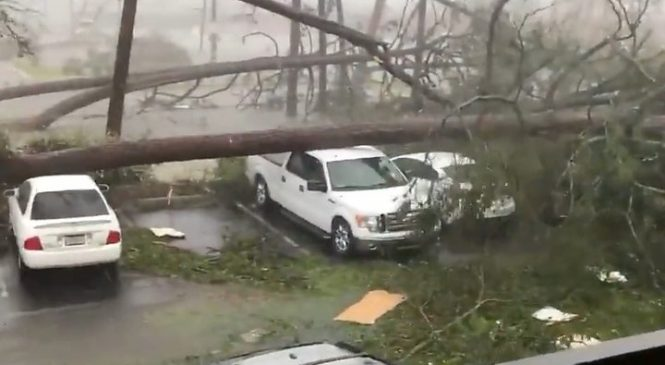 Storm Michael: Record-breaking storm mauls US south-east