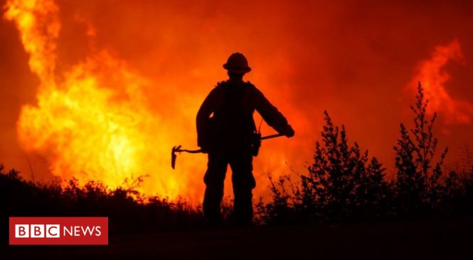 Climate change: Worries over CO2 emissions from intensifying wildfires