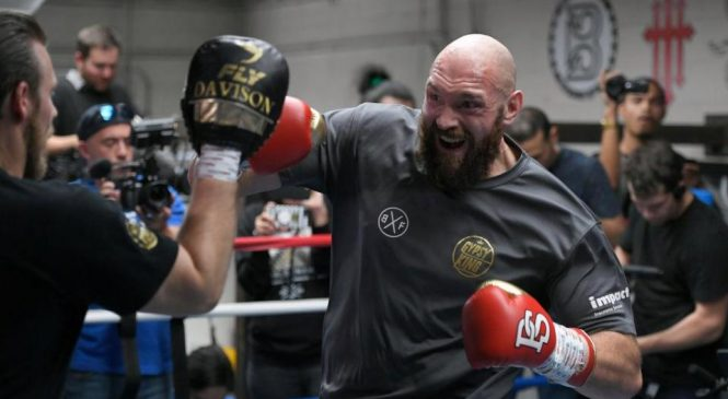 Tyson Fury's bout with Deontay Wilder is too soon for British heavyweight, says friend Dereck Chisora