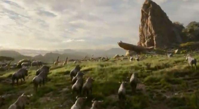Awwww! Watch Disney's trailer for new Lion King