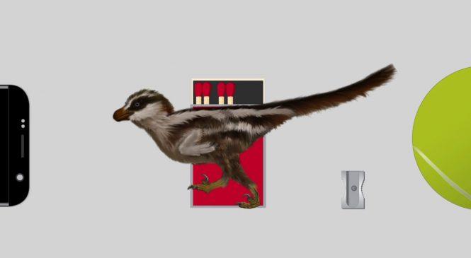 World's smallest dinosaur tracks reveal new sparrow-sized raptor
