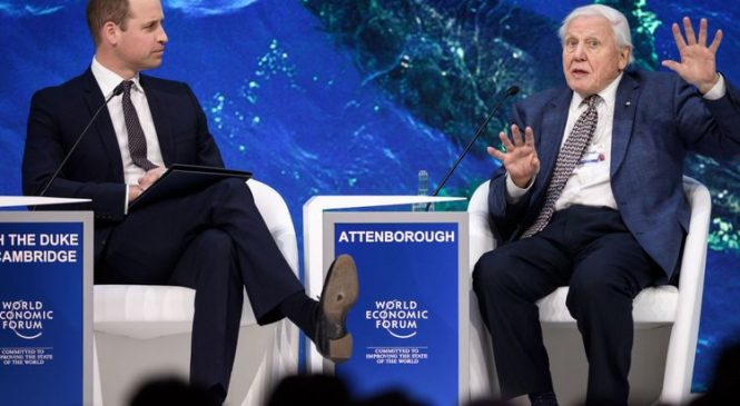 Natural world at severe risk, Attenborough tells Prince William