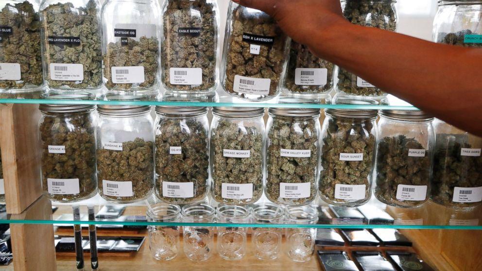 Chronic pain given as top reason for using medical marijuana