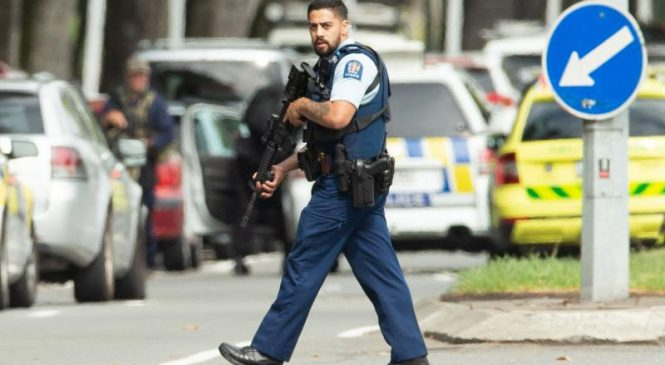 Explosive device, ammunition found on Christchurch property