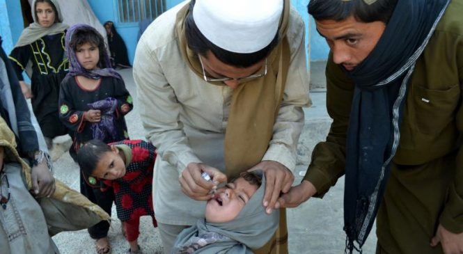 Pakistan's vaccination campaign suspended after worker killed