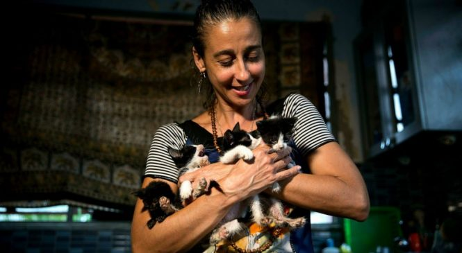 In possible first, Cuba allows march by animal activists
