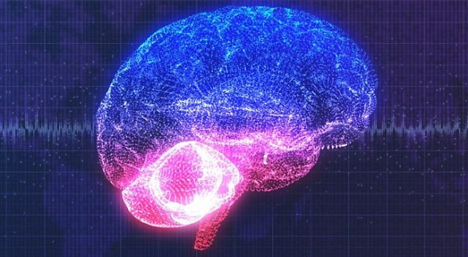 'Exhilarating' implant turns thoughts to speech