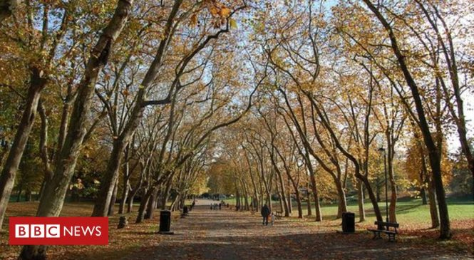 Millions 'lack access' to parks and green spaces