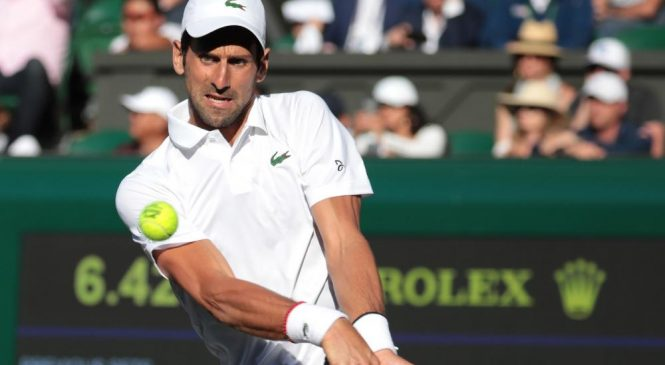 Moments from the 2019 Wimbledon Championship