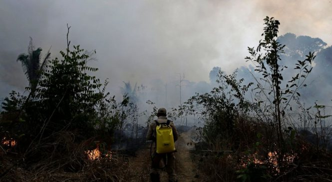 Respiratory ailments hit in Amazon as Brazil spurns G-7 aid