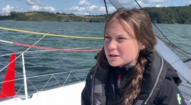 Greta Thunberg: Caroline Lucas reports Arron Banks to Twitter